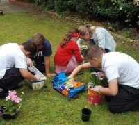 Pupils work on the care home garden