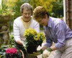 Home Instead Senior Care (Taunton)