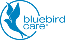 Bluebird Care (Bromsgrove & Redditch)