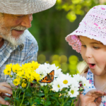 Elderly man in hat and young girl look at flowers and butterfly