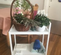 a flower basket, array of plants and essential oils. Part of the activities used in the multi-sensory project for people living with dementia