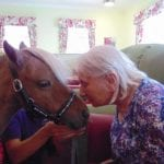 Star the Pony with residents
