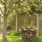 Redannick Care Home gardens