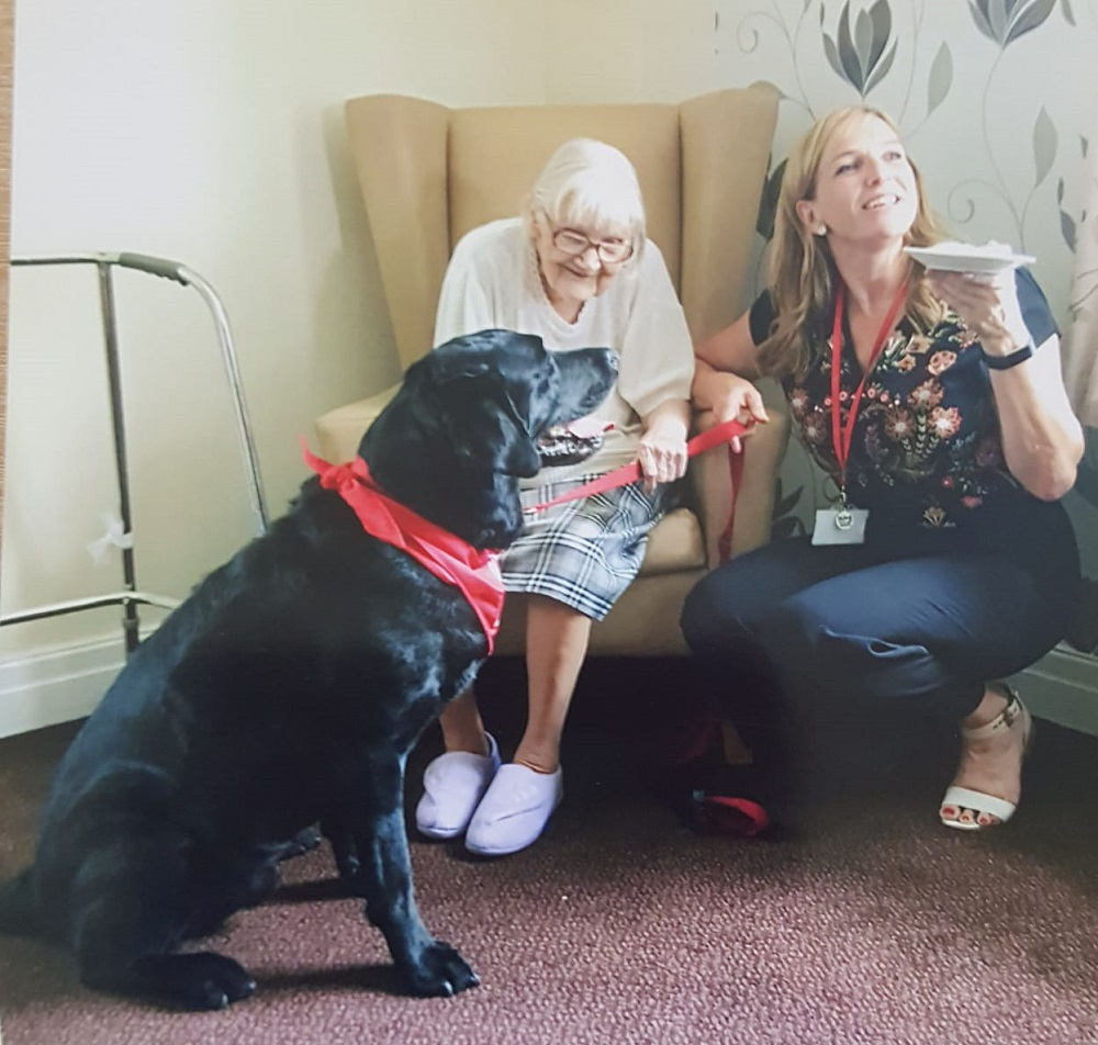 Oscar the PAT dog brings care home residents joy at recent meeting.