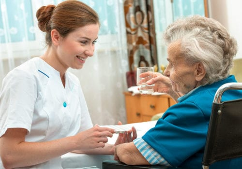 Lapis Domiciliary Care