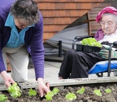 Ridgeway_Gardening