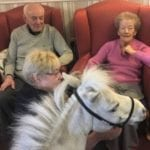 Blondie the shetland pony meets ingleby care home residents