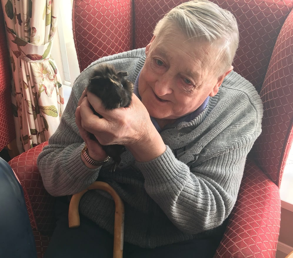 The Gables Care Home resident James Haslam with a guinea pig from Pets at Home.