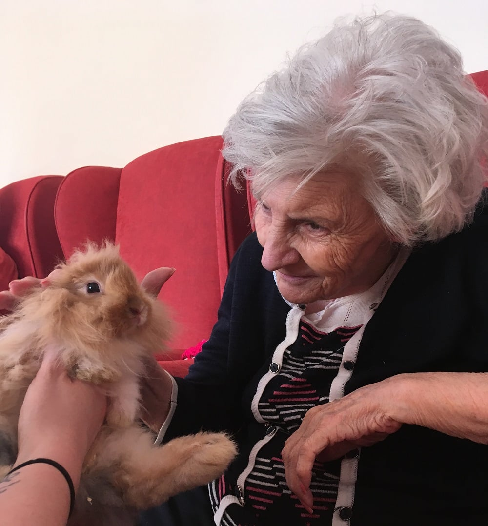 The Gables Care Home resident Maureen Hall with a rabbit from Pets at Home