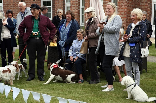 Middleton Hall dog show