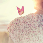 anne robson trust butterfly image